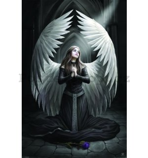 Plakát - Anne Stokes Prayer for Fallen