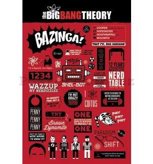 Plakát - The Big Bang Theory (Infografika)