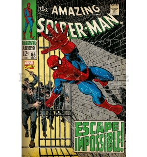 Plakát - Amazing Spiderman (Comics)