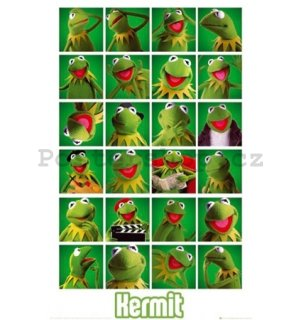 Plakát - The Muppets kermit collage