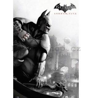 Plakát - Batman Arkham City