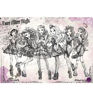 Fototapeta: Mattel Ever After High (1) - 254x368 cm