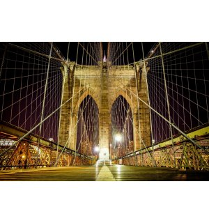 Fototapeta: Noční Brooklyn Bridge - 254x368 cm