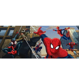 Fototapeta - Spiderman (2)