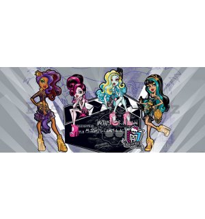 Fototapeta: Monster High (4) - 104x250 cm