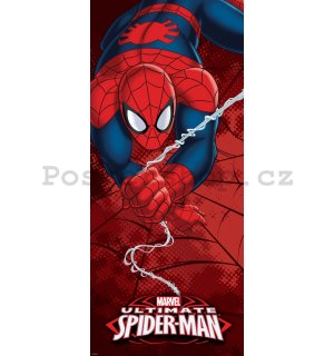 Fototapeta - Spiderman (4)