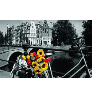 Fotoobraz - Tulips from Amsterdam
