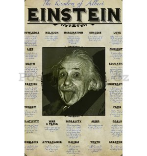 Fotoobraz - Einstein Quotes