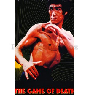 Fotoobraz - Bruce Lee (Game of Death Sun)