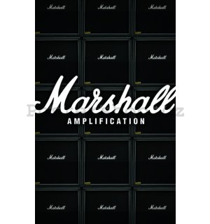 Fotoobraz - Marshall (Amplification)