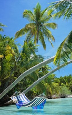 Fotoobraz - Hammock tropical beach