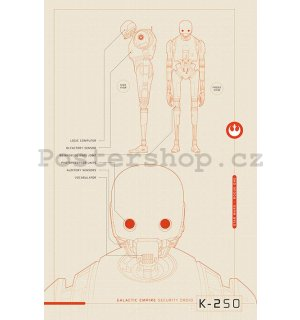 Plakát - Star Wars Rogue One (K-2S0 Blueprints)