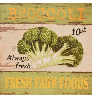 Obraz na plátně - Broccoli (Fresh Farm Foods)