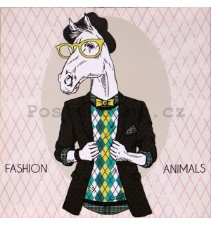 Obraz na plátně - Fashion Animal (kůň)