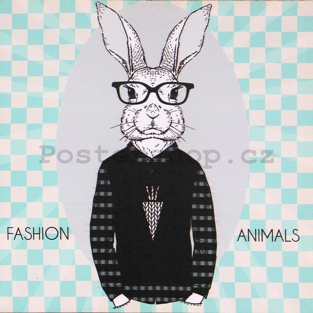 Obraz na plátně - Fashion Animal (zajíc)