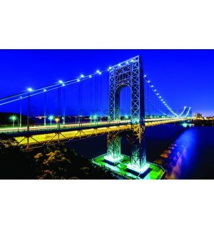 Fototapeta: Manhattan Bridge - 184x254 cm