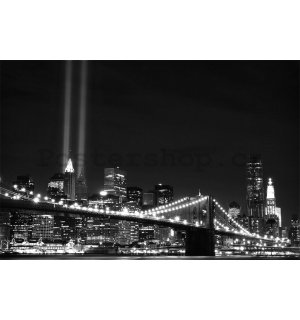 Fototapeta: Černobílý Brooklyn Bridge (2) - 184x254 cm