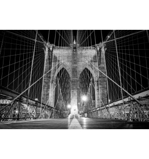 Fototapeta: Brooklyn Bridge (černobílý detail) - 184x254 cm