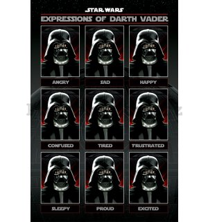 Plakát - Star Wars (Expressions of Darth Vader)