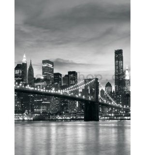 Fototapeta: Brooklyn Bridge - 254x184 cm