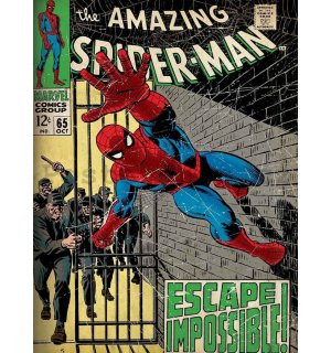 Obraz na plátně: The Amazing Spider-man (Escape Impossible) - 75x100 cm