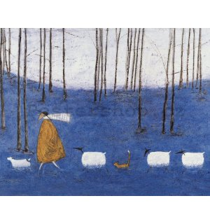 Obraz na plátně - Sam Toft, Tiptoe throgh the Bluebells