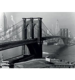 Obraz na plátně - Time Life, Brooklyn Bridge, New York 1946