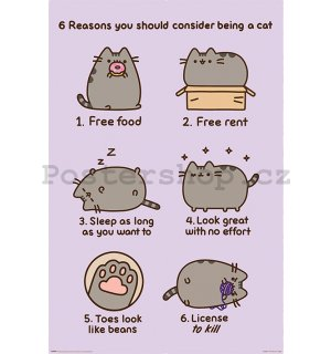 Plakát - Pusheen (Reasons to be a Cat)