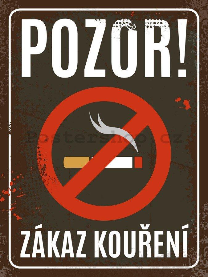 Zde by lépe než kde jinde mohli matky poučiti o zhoubě kouření dítek a míti je k.