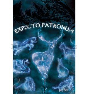 Plakát - Harry Potter (Expecto Patronum)