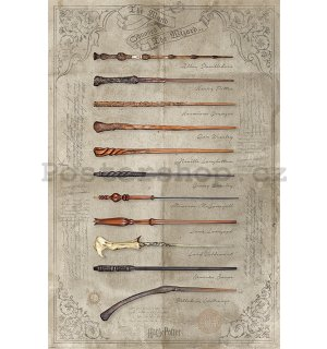 Plakát - Harry Potter (The Wand Chooses The Wizard)