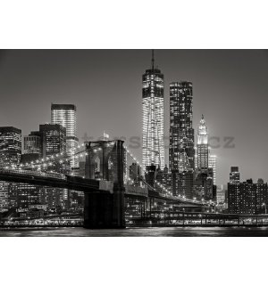 Fototapeta vliesová: Brooklyn Bridge (4) - 184x254 cm