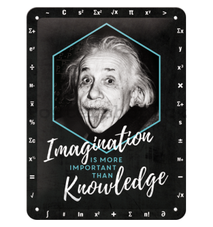 Plechová cedule: Einstein (Imagination & Knowledge) - 20x15 cm