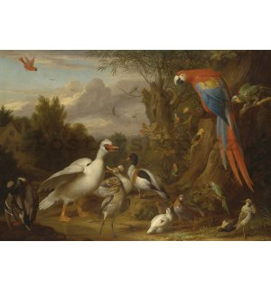 Fototapeta: Ducks, Parrots and Other Birds in a Landscape - 104x152,5 cm