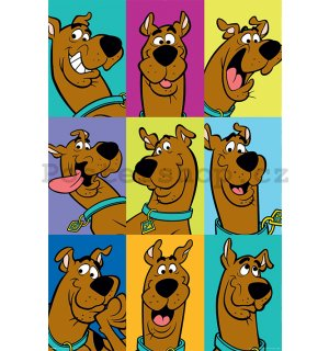 Plakát - Scooby Doo (The Many Faces Of Scooby Doo)